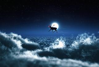 Santa's Reindeer - Obrázkek zdarma pro HTC Desire HD
