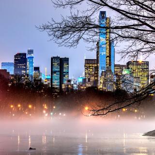 New York Central Park - Obrázkek zdarma pro iPad