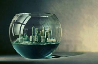 City Aquarium Wallpaper for Android, iPhone and iPad
