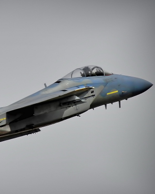 McDonnell Douglas F 15 Eagle - Obrázkek zdarma pro Nokia C2-05