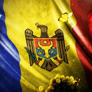 Moldova Flag - Obrázkek zdarma pro 320x320