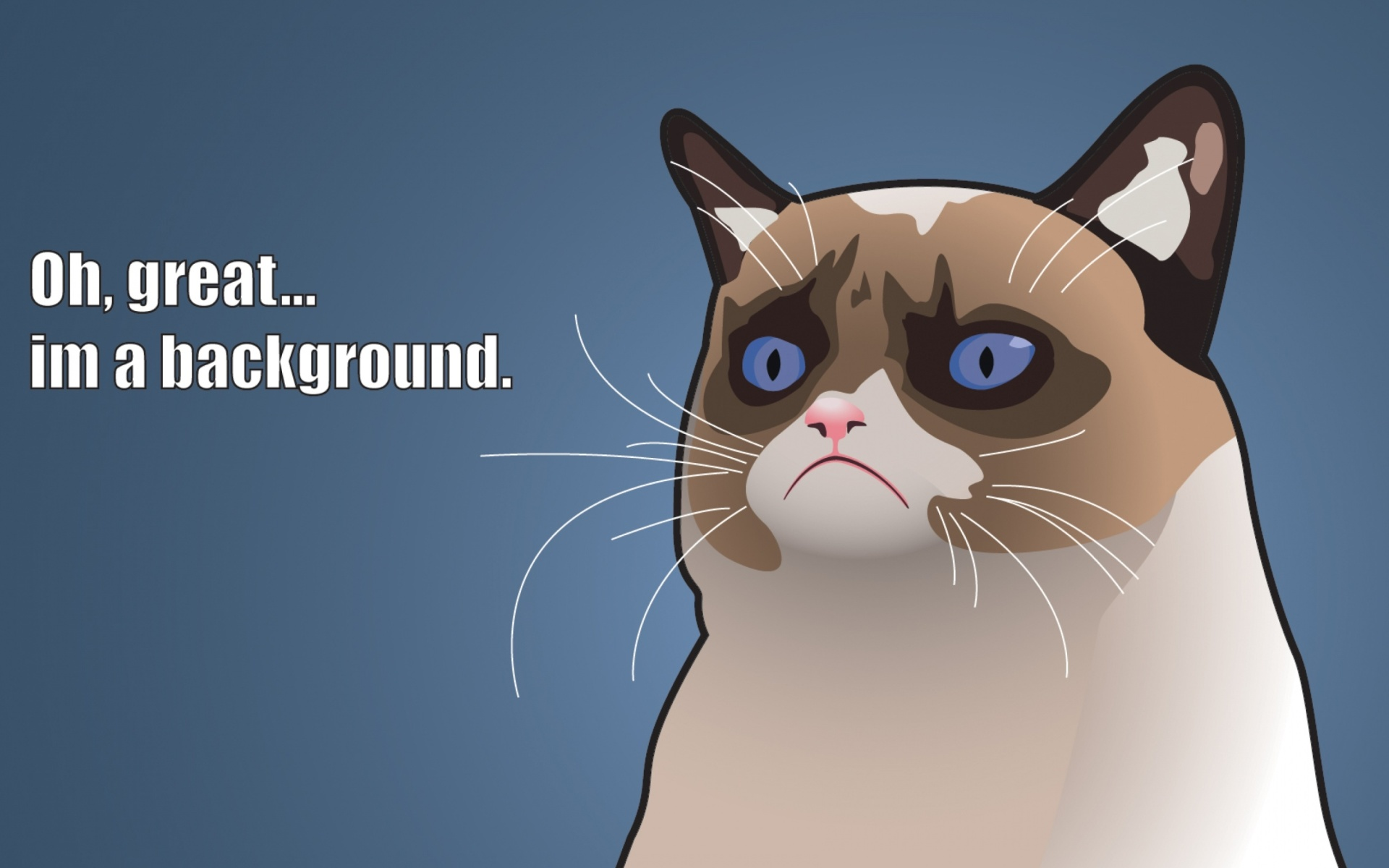 Grumpy Cat, Oh Great Im a Background Wallpaper for 1920x1200