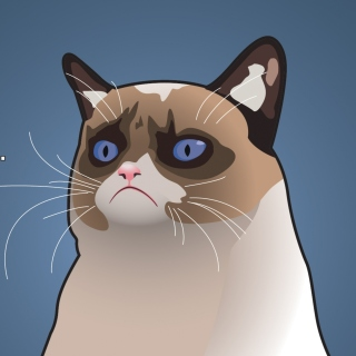 Grumpy Cat, Oh Great Im a Background - Obrázkek zdarma pro 1024x1024