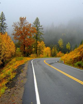 Autumn Sodden Road - Obrázkek zdarma pro iPhone 4S