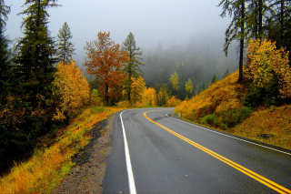 Autumn Sodden Road Background for Android, iPhone and iPad