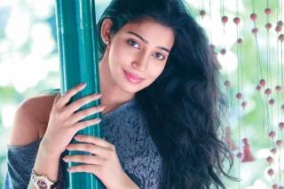 Sherrin Bollywood Celebrity - Obrázkek zdarma pro HTC Desire