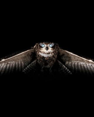 Owl - Obrázkek zdarma pro Nokia 5800 XpressMusic
