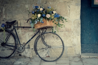 Flower Bicycle Wallpaper for Android, iPhone and iPad
