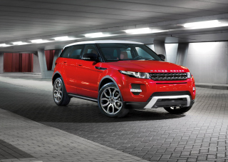 Free Range Rover Picture for Android, iPhone and iPad