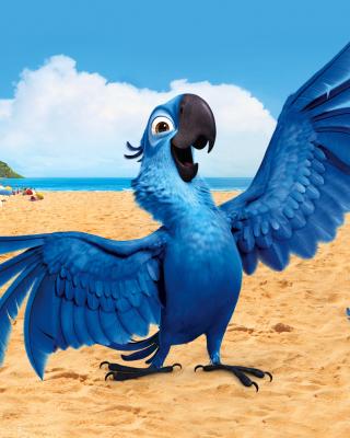 Rio, Blu Parrot - Obrázkek zdarma pro Nokia Lumia 505