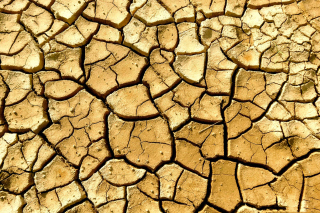 Free Dry Ground Picture for Android, iPhone and iPad