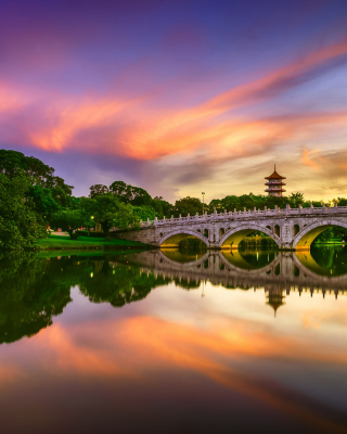 Chinese Garden Singapore - Obrázkek zdarma pro Nokia Lumia 505