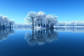 Winter Reflections Picture for Android, iPhone and iPad