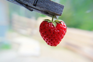 Free Red Strawberry Heart Picture for Android, iPhone and iPad