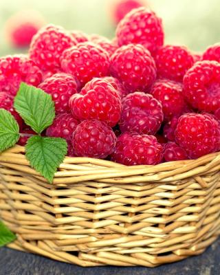 Basket with raspberries - Obrázkek zdarma pro Nokia Asha 203
