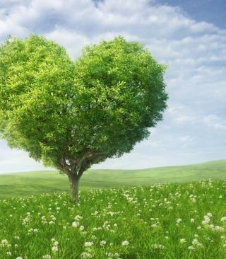 Nature Heart - Obrázkek zdarma pro Nokia X6