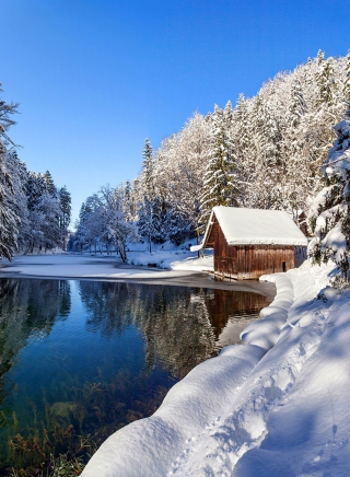 Winter House - Obrázkek zdarma pro Nokia Lumia 820