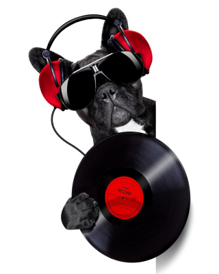 DJ Dog - Obrázkek zdarma pro iPhone 5S