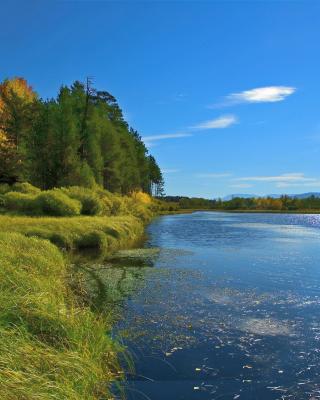 Lake Louise Panorama, Alberta, Canada - Obrázkek zdarma pro Nokia Asha 311