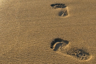 Footprints On Sand Background for Android, iPhone and iPad