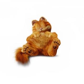 Lazy Garfield - Obrázkek zdarma pro iPad 3