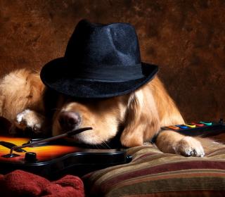 Dog In Hat - Obrázkek zdarma pro 208x208