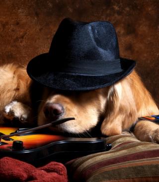 Dog In Hat - Obrázkek zdarma pro 128x160