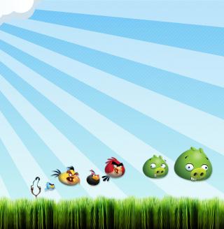 Angry Birds Bad Pigs - Obrázkek zdarma pro 208x208