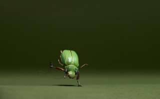 Green Bug Background for Android, iPhone and iPad