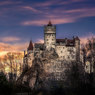Bran Castle in Romania - Obrázkek zdarma pro 320x320