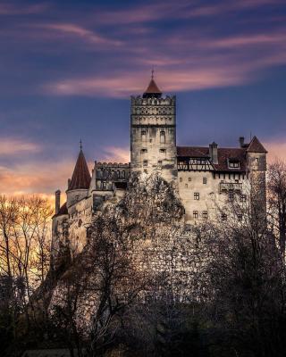Bran Castle in Romania - Obrázkek zdarma pro Nokia C2-00