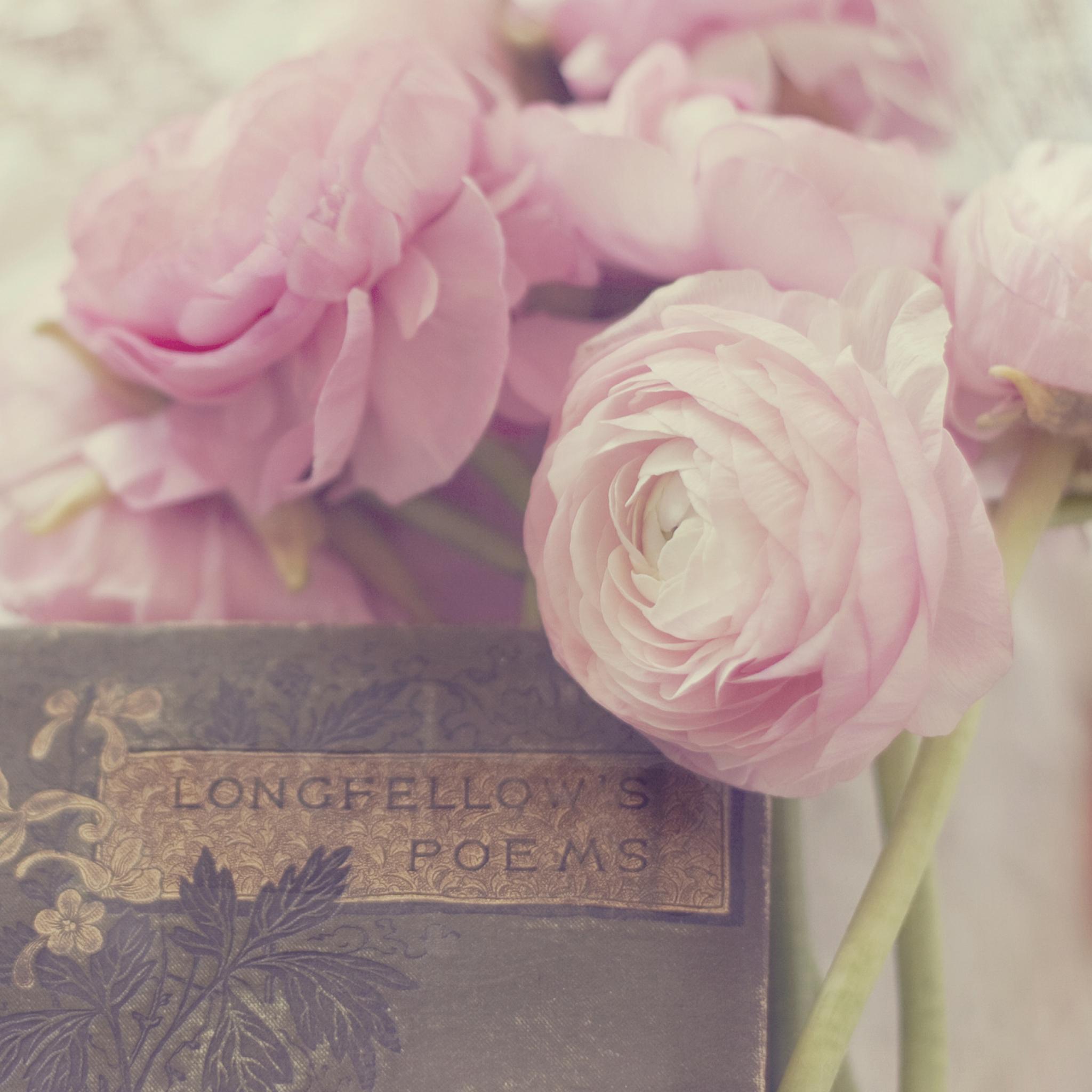 цветы тетрадь листы сердце  № 1351079 без смс
