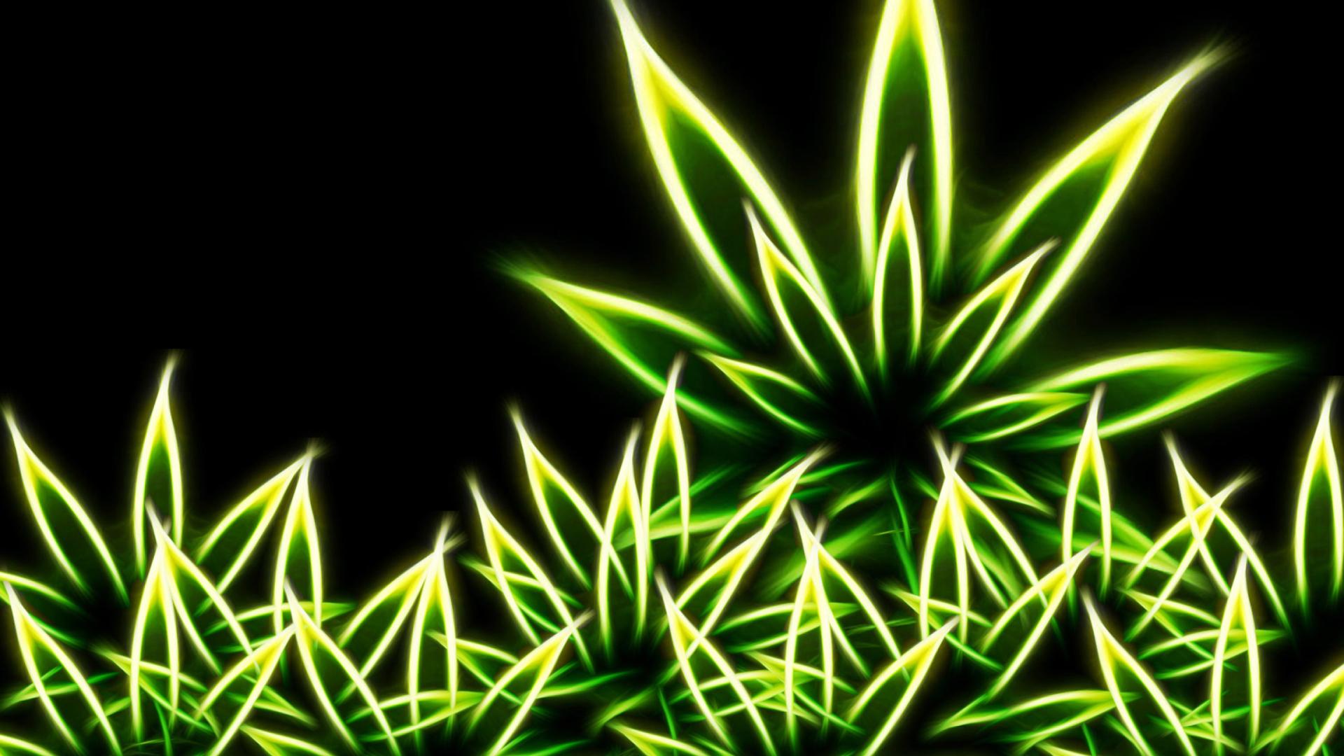 Marijuana fondos de pantalla gratis para escritorio for Fondos de escritorio full hd