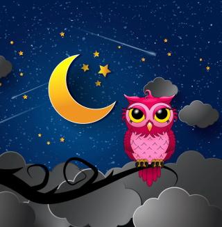 Silent Owl Night - Obrázkek zdarma pro 320x320