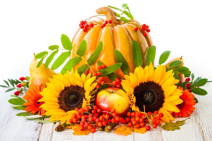 Harvest Pumpkin and Sunflowers wallpaper