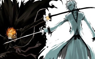 Kurosaki Ichigo - Obrázkek zdarma pro Fullscreen Desktop 1024x768
