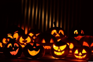 Halloween Pumpkins In The Dark Picture for Android, iPhone and iPad