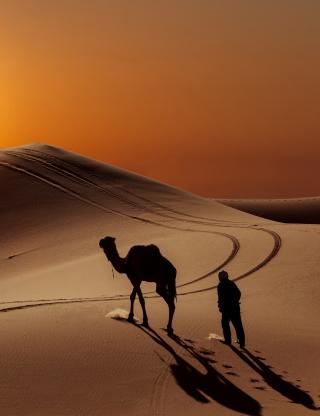 Desert - Obrázkek zdarma pro Nokia Lumia 610