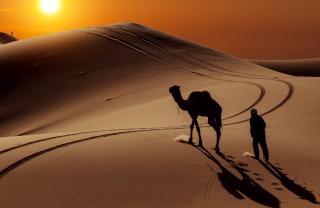 Desert - Obrázkek zdarma pro Android 1280x960