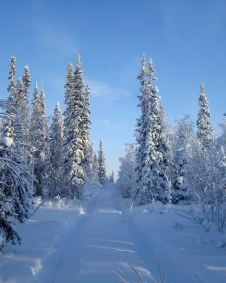 Snowy winter - Obrázkek zdarma pro iPhone 6 Plus