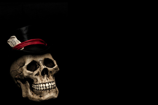 Lucky Skull - Obrázkek zdarma pro 1024x768