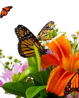 Lilies and orange butterflies - Obrázkek zdarma pro Nokia C2-02