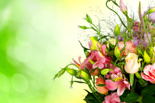 Calla Lily Bouquet Picture for Android, iPhone and iPad