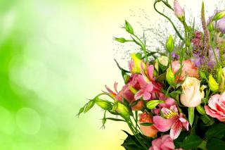 Calla Lily Bouquet - Obrázkek zdarma pro 2560x1600