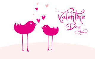 Birds And Valentines Day Picture for Android, iPhone and iPad