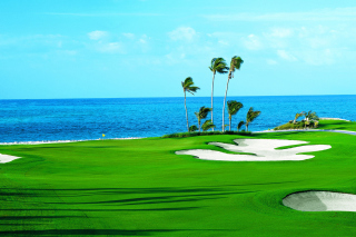 Golf Course on Ponte Vedra Beach - Obrázkek zdarma pro LG Optimus M