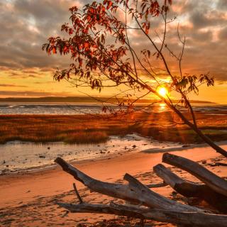 Romantic Sunset in Semidarkness - Obrázkek zdarma pro iPad