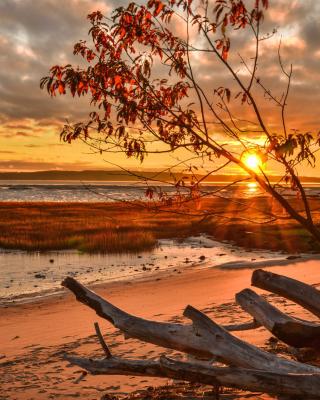 Romantic Sunset in Semidarkness - Obrázkek zdarma pro Nokia Lumia 620