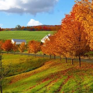 Autumn in Slovakia - Obrázkek zdarma pro iPad mini 2