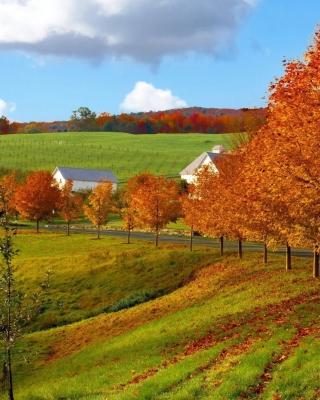Autumn in Slovakia - Obrázkek zdarma pro 360x400